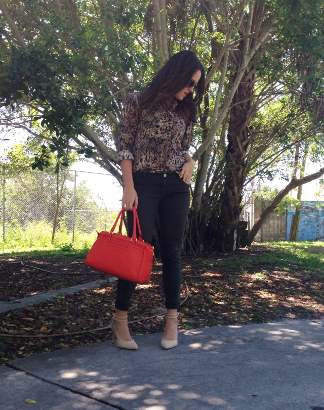 leopard | three wishes style